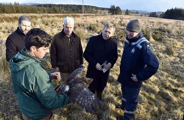 Minister Creed Opens €25m Hen Harrier Programme