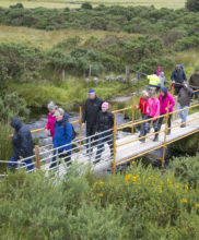 Temporary Bridge constructed on Granamore Commonage for the atendees at the SUAS Pilot Project Open Day Event