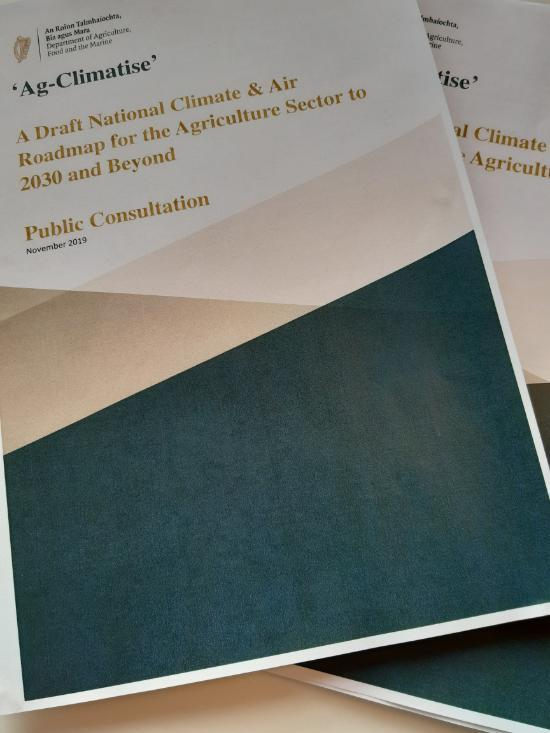 Climate Action Consultation