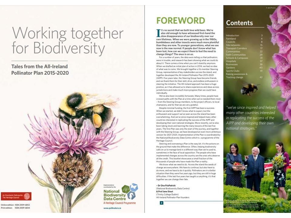 All-Ireland Pollinator Plan