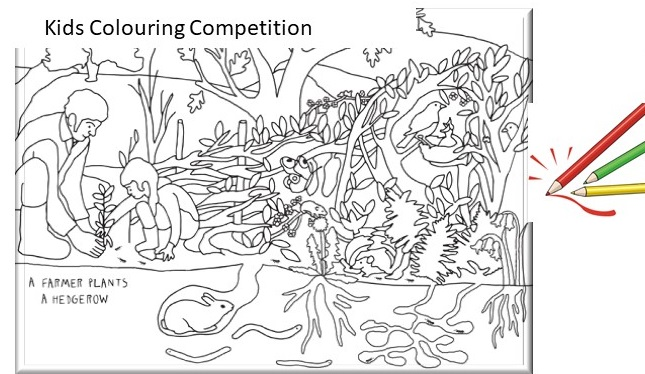 NRN Colouring Comp